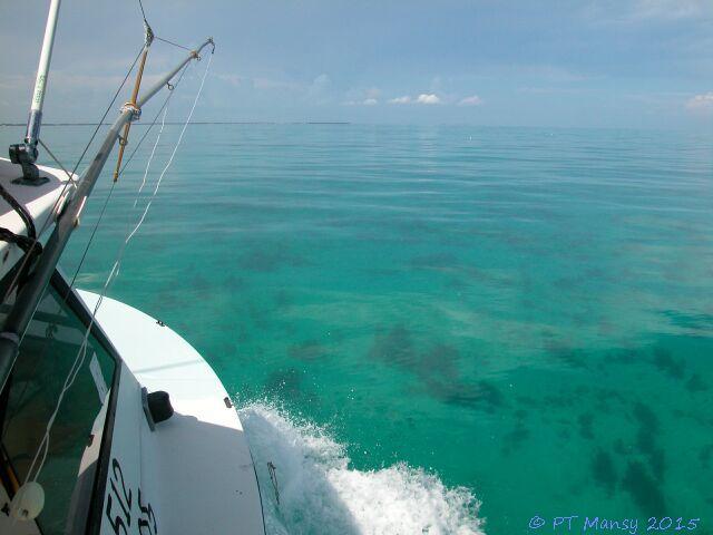 Hawk Channel, Florida Keys, Fish Hawk