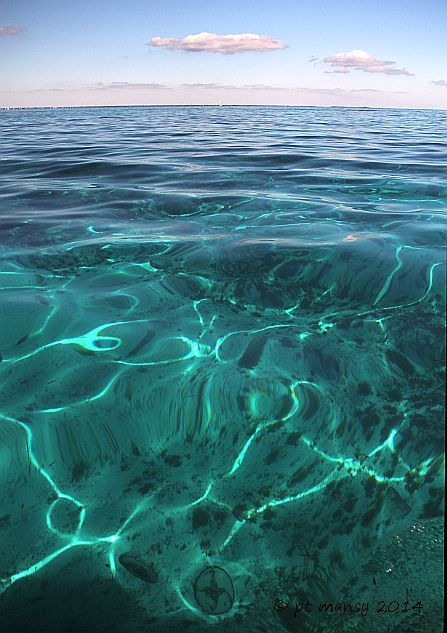 hawk_channel_com_molasses_reef_light_10_IMG_4791